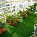 Balcon cu flori si plante decorative