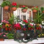 Balcon cu glastre cu flori
