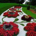 Decoratiune gradina din flori