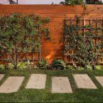 Gard de lemn cu plante decorative