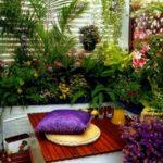 Gradina luxurianta balcon