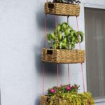 Gradina verticala balcon