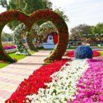 Inimi din flori