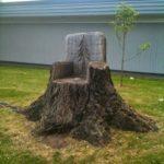 Scaun din trunchi de copac