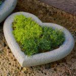 Suport de flori in forma de inima