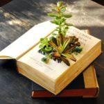 Suport flori dintr-o carte