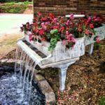 uport flori dintr-un pian vechi