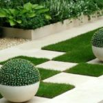 Amenajare gradina cu cactusi