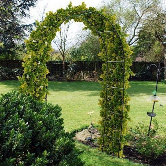 Arcada gradina cu plante agatatoare