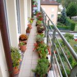 Balcon mic cu gradina