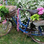 Bicicleta transformata in suport de flori