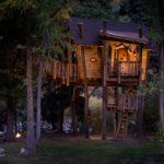 Casa mare in copac
