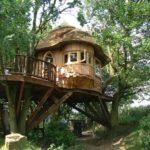 Casa mare in copaci
