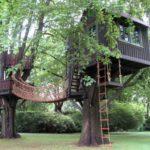 Casuta in copac cu pod