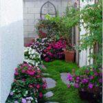 Colt de gradina cu multe flori
