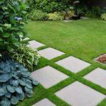 Colt de gradina cu plante decorative