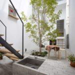 Copac in interior