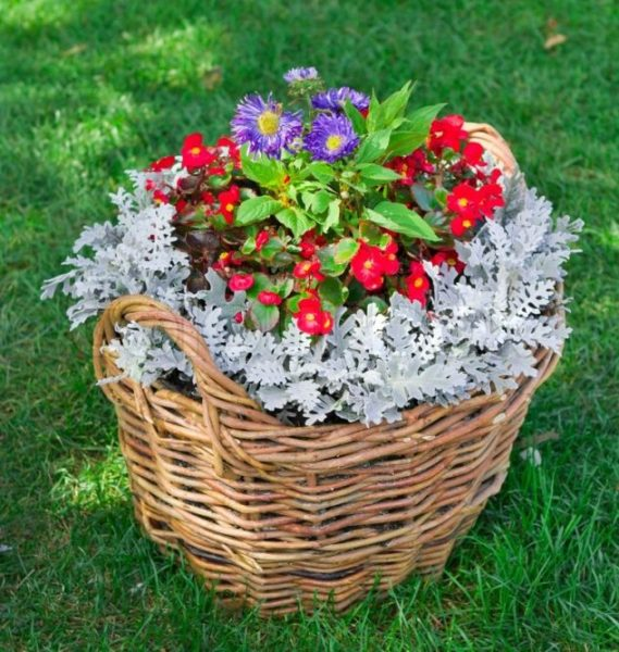Cos de flori din nuiele