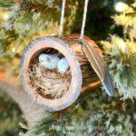 Cuib de pasari din trunchi de copac