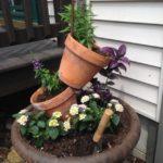 Decor gradina din vase de plante