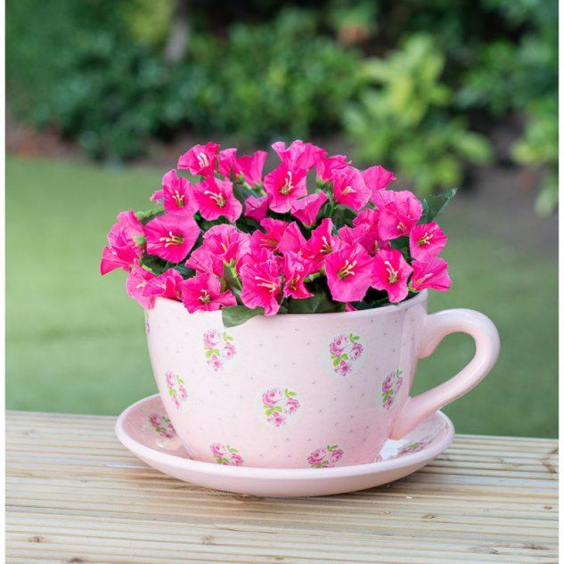 Decoratiune cu cana si flori roz