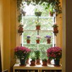 Decoratiune fereastra cu flori
