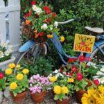 Decoratiune gradina cu bicicleta si flori