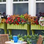 Glastre cu plante multicolore