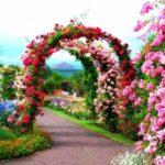 Gradina cu arcade de flori