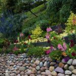 Gradina cu flori colorate