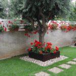 Gradina cu flori rosii