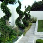 Gradina cu plante agatatoare