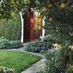 Gradina cu pomi fructiferi