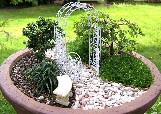 Gradina in miniatura cu plante decorative