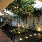 Gradina interioara cu arbori