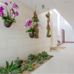 Gradina interioara cu plante suculente si flori