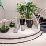Gradina interioara langa scari