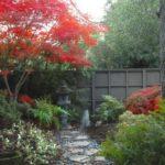 Gradina japoneza cu plante multicolore