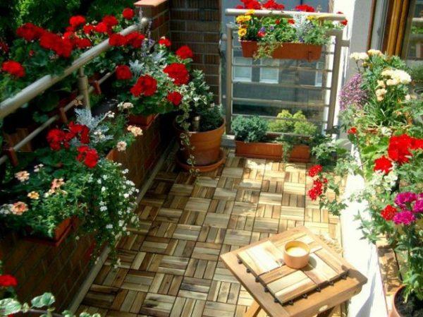 Gradina mica pe balcon