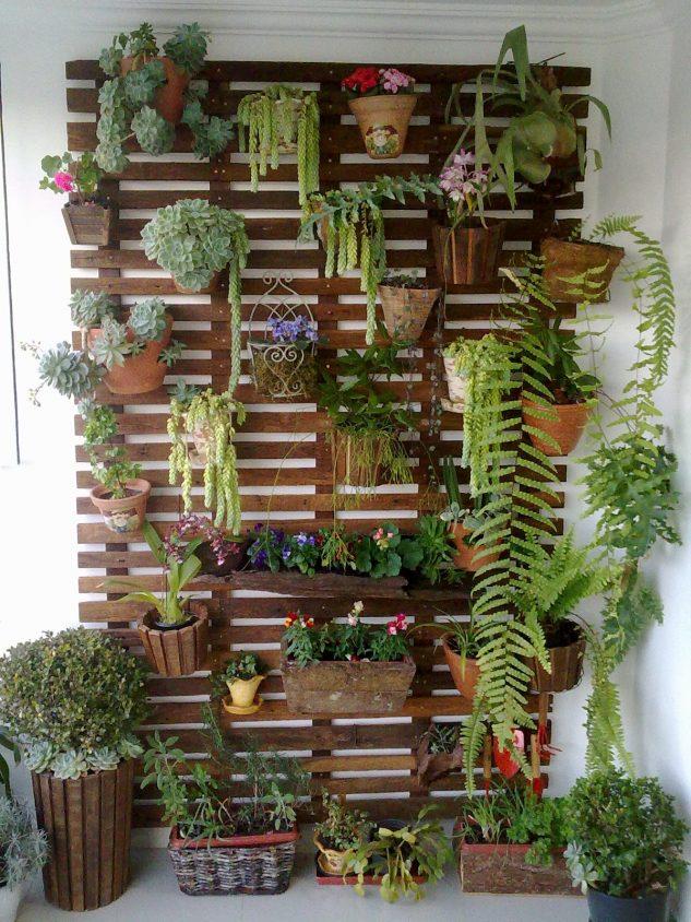 Gradina vericala cu plante decorative