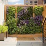 Gradina verticala cu plante si flori