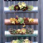 Gradina verticala cu plante suculente