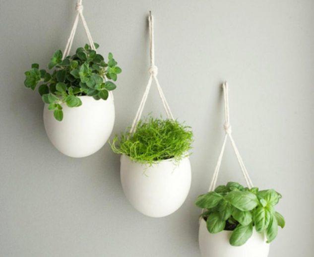 Gradina verticala cu vase agatate de perete