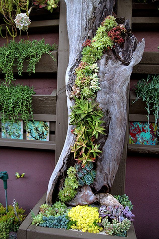 Gradina verticala in trunchi de copac