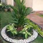 Rond plante cu pietris alb