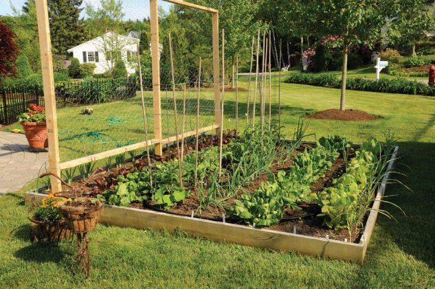 Strat inaltat de legume