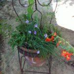 Suport de flori in forma de scaun