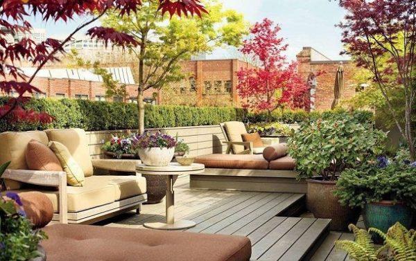 Terasa cu canapele si arbori pe acoperis