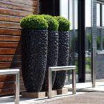 Vase conice din ciment pentru arbusti