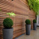 Vase din ciment conice pentru arbusti